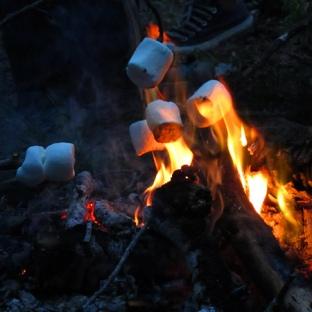 marshmallow-fire